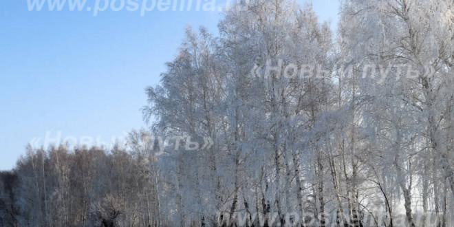 Фотоальбом: Зимние этюды