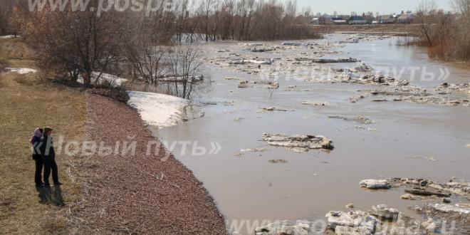 Фотоальбом «Разлив реки Алей-2021»
